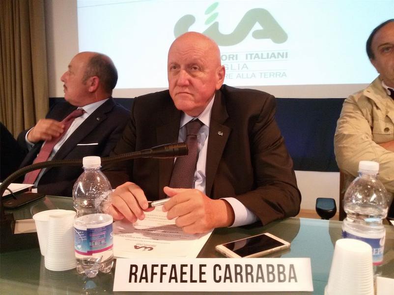 """Puglia olivicola, Cia: """"Dal Piano di Rigenerazione fondi alla 4.1.C"""""""