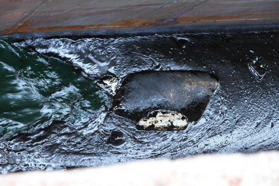 """Sostanze oleose in Mar Grande, M5S: """"Ennesimo scempio ambientale"""""""