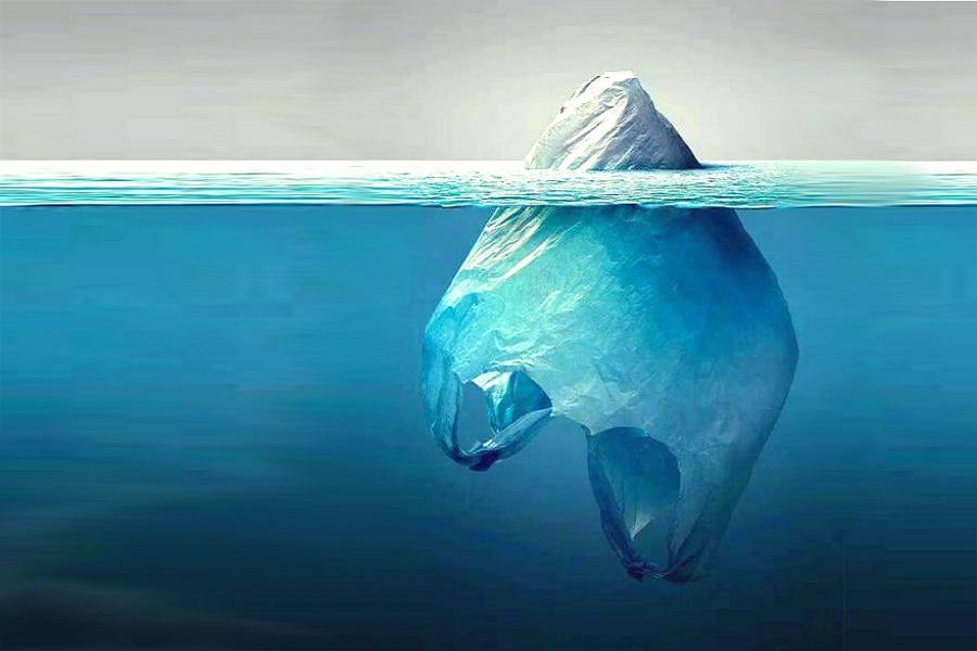 """Giornata Mondiale Oceani, WWF Italia: """"Mediterraneo in 'trappola'"""""""