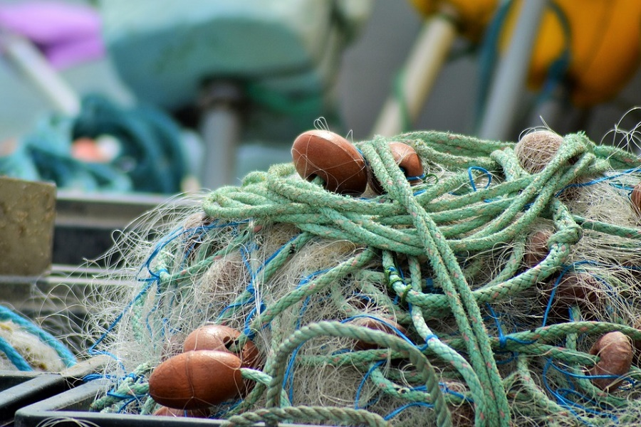 Rilancio mitilicoltura e itticoltura tarantina, al via Tavolo Tecnico