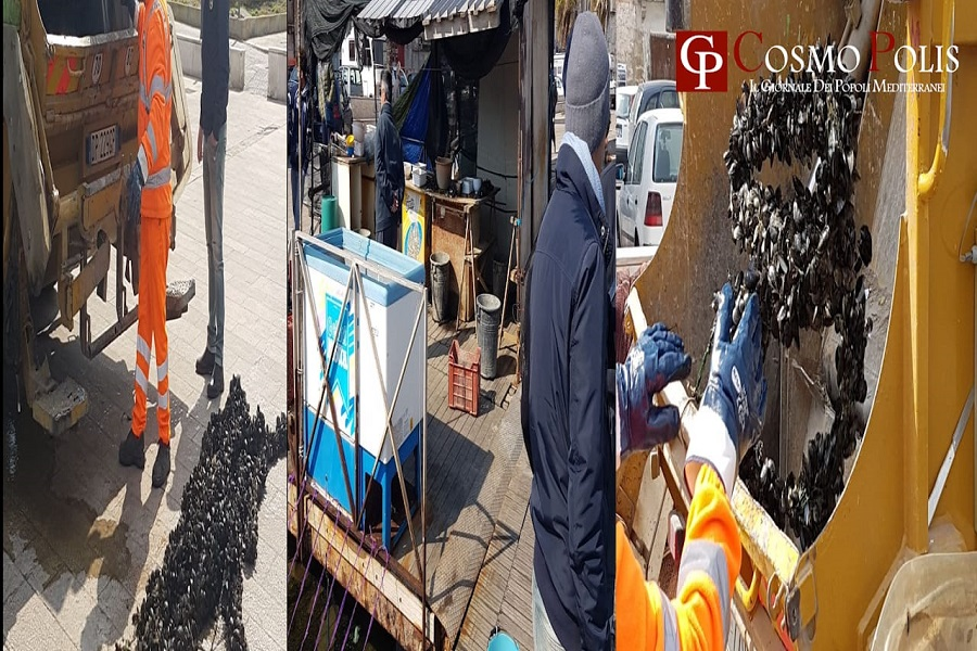 Cozze vendute per strada