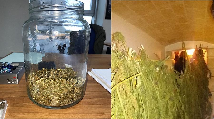 Un laboratorio per la produzione di marijuana: nei guai due fratelli di Manduria