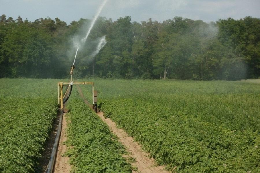Un'IDEA per gli agricoltori pugliesi
