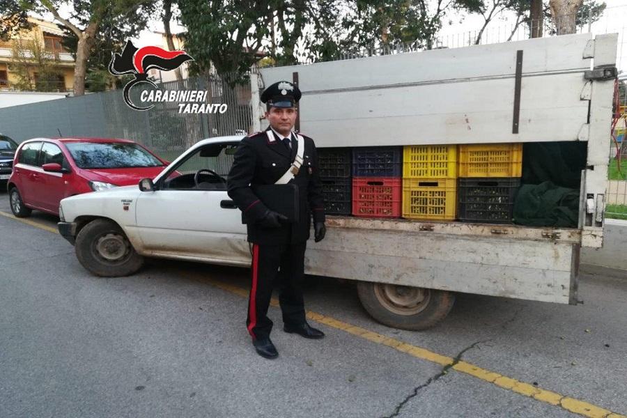 Rubano oltre 700 kg di olive: arrestati
