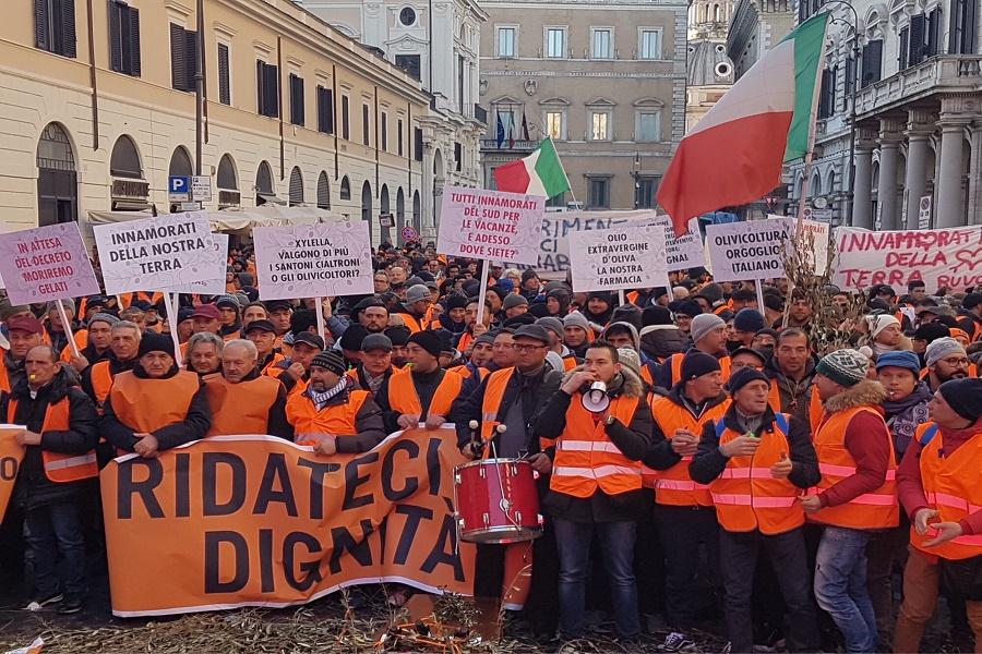 "Protesta gilet arancioni, Centinaio: ""Presto decreti"""