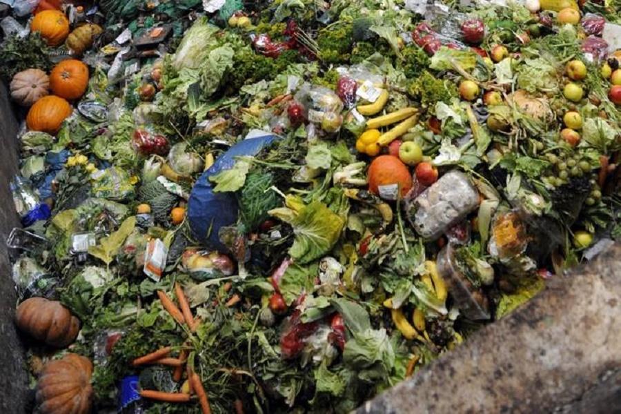 No agli sprechi alimentari e farmaceutici