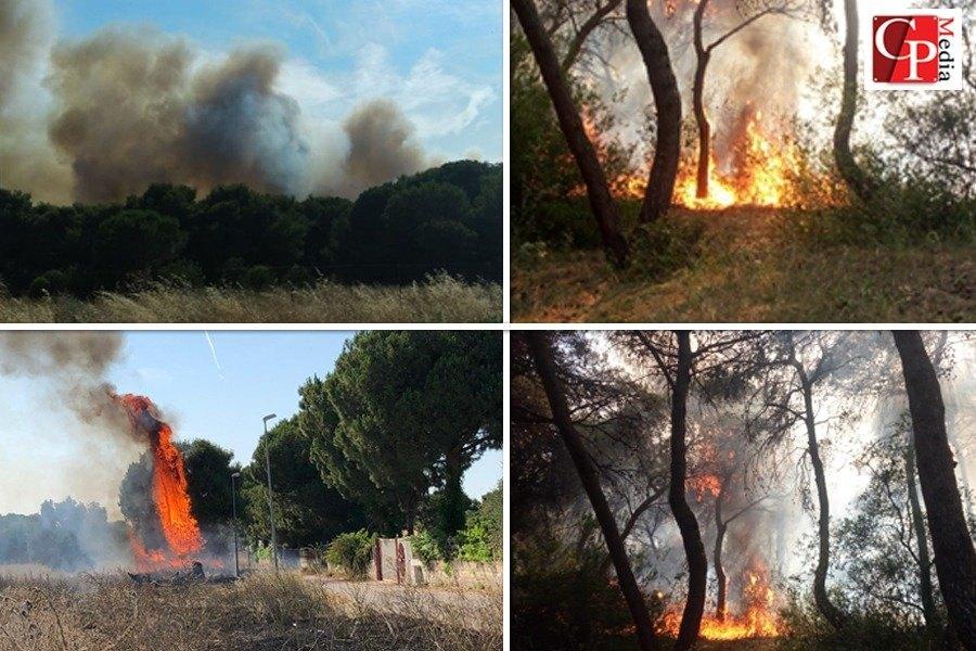 Vasto incendio in località Lido Azzurro