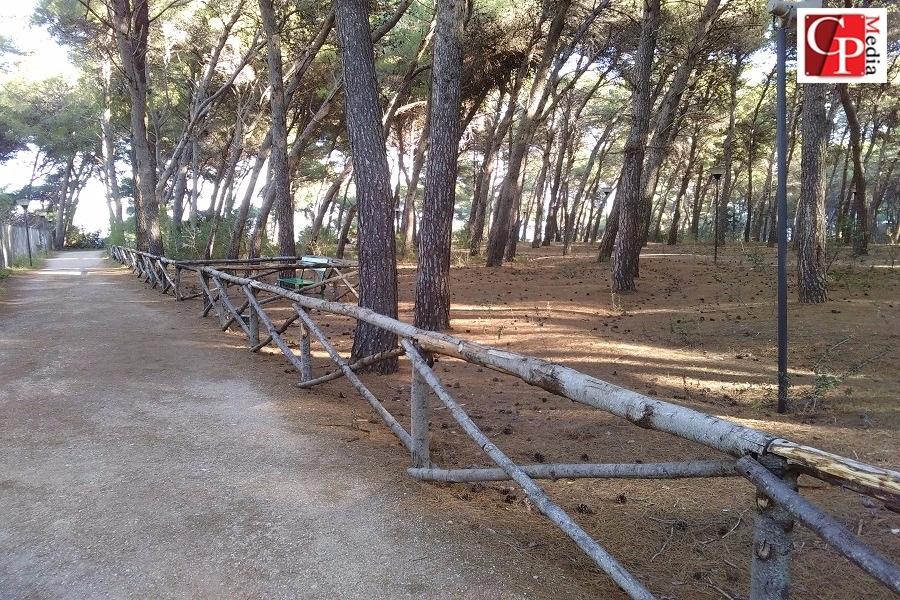 Parco Cimino: al via lavori di manutenzione