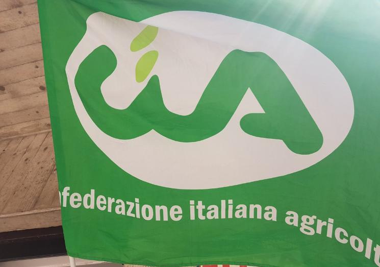 """Reati in agricoltura, CIA Puglia: """"In tutte le province tavoli istituzionali tematici territoriali"""""""